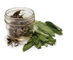 Dehydrated Sage Leaves with The Canning Diva