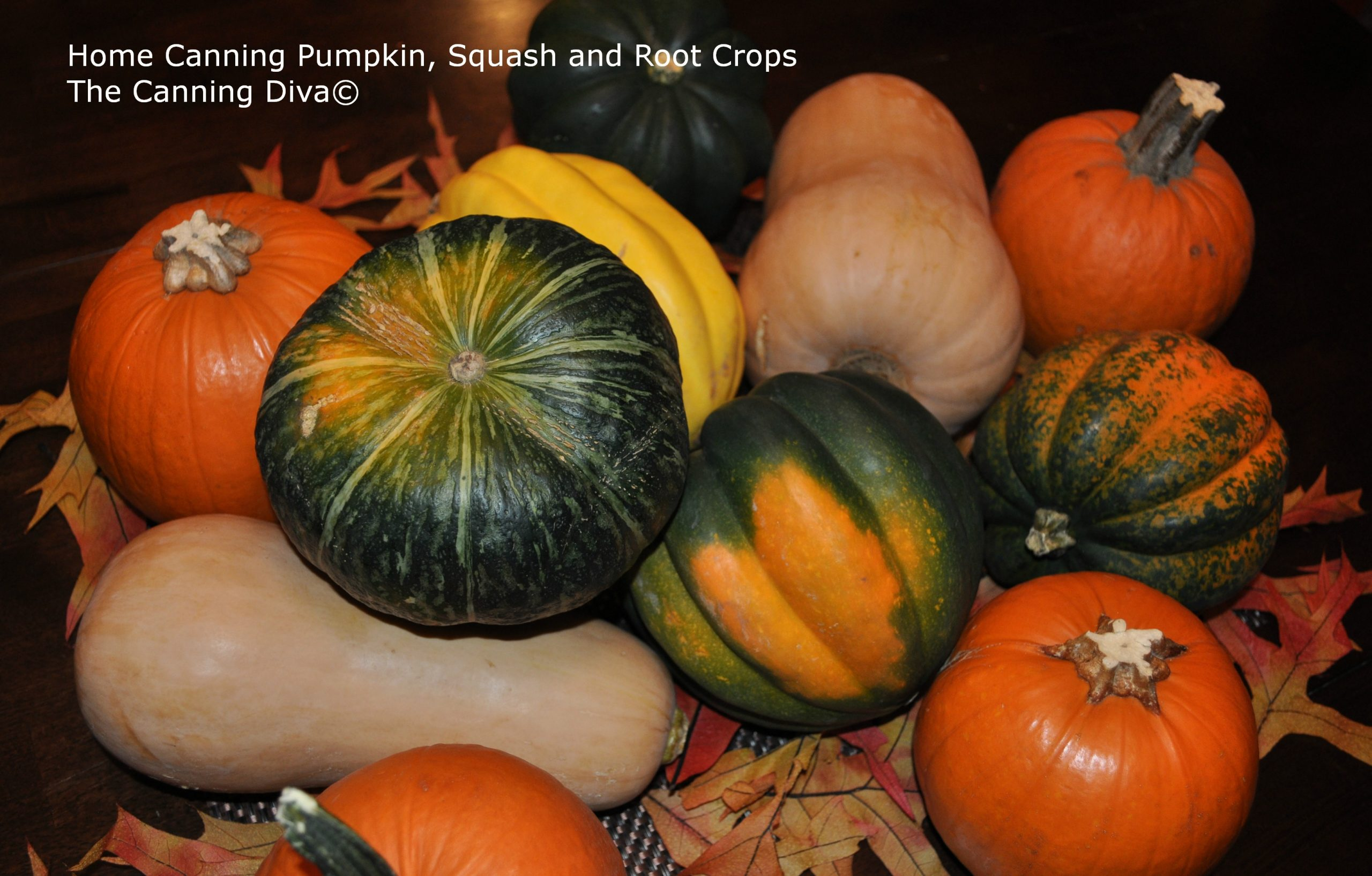 Home Canning Pumpkin Squash and Root Crops