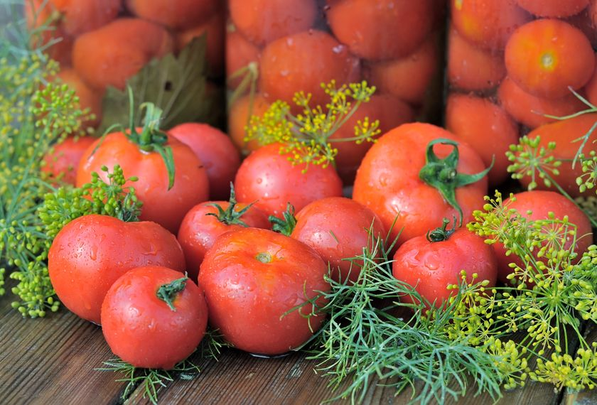 tomato image with dill